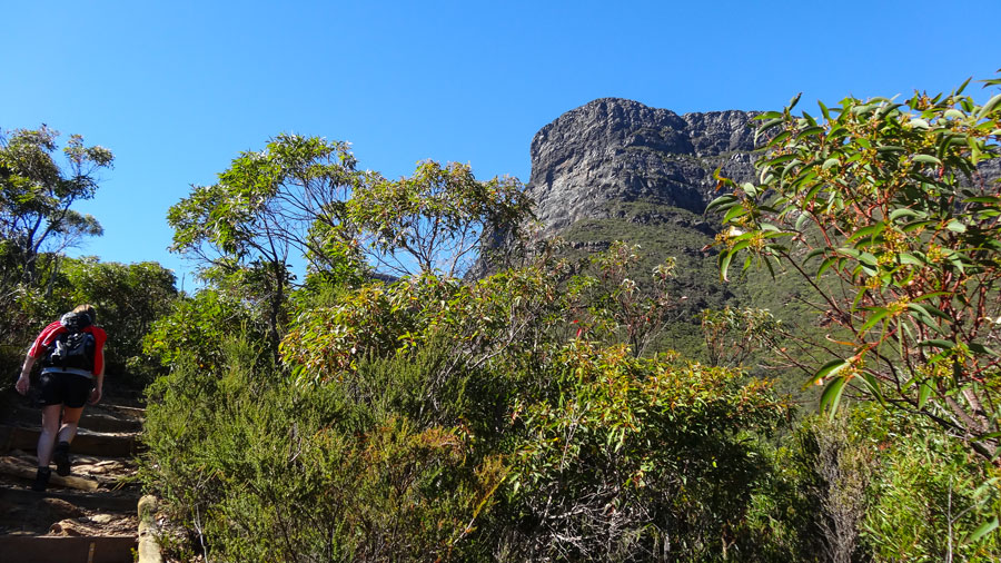 wir kommen dem Gipfel des Bluff Knoll näher..., Stirling Range NP, Australien