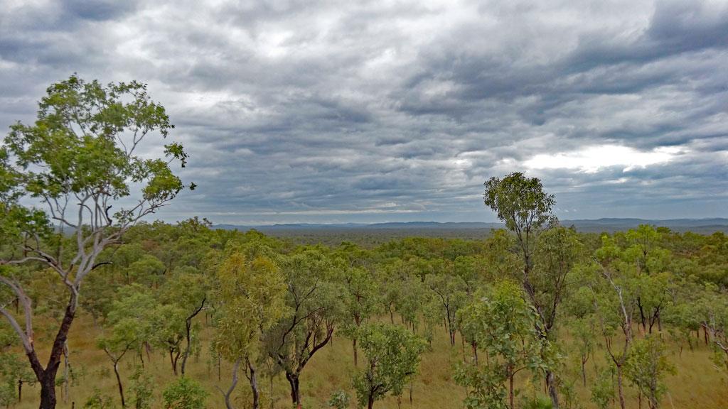 Eine Woche Kakadu Nationalpark und Umgebung!