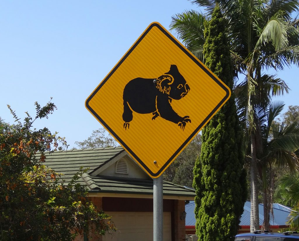 Achtung Koala-Schild in Australien