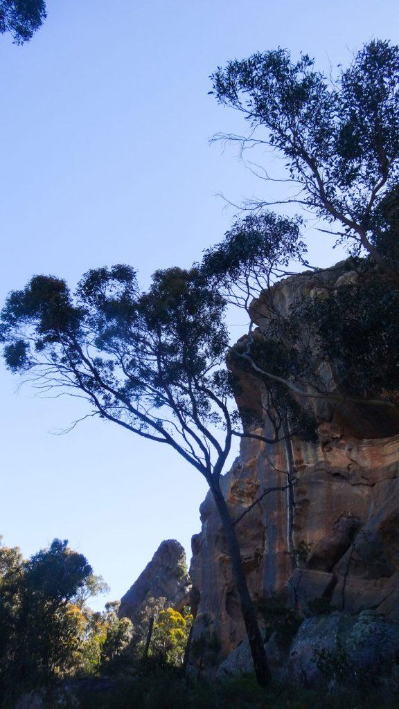 Wonderland Walk- der Weg Richtung Halls Gap, Grampians Nationalpark Australien
