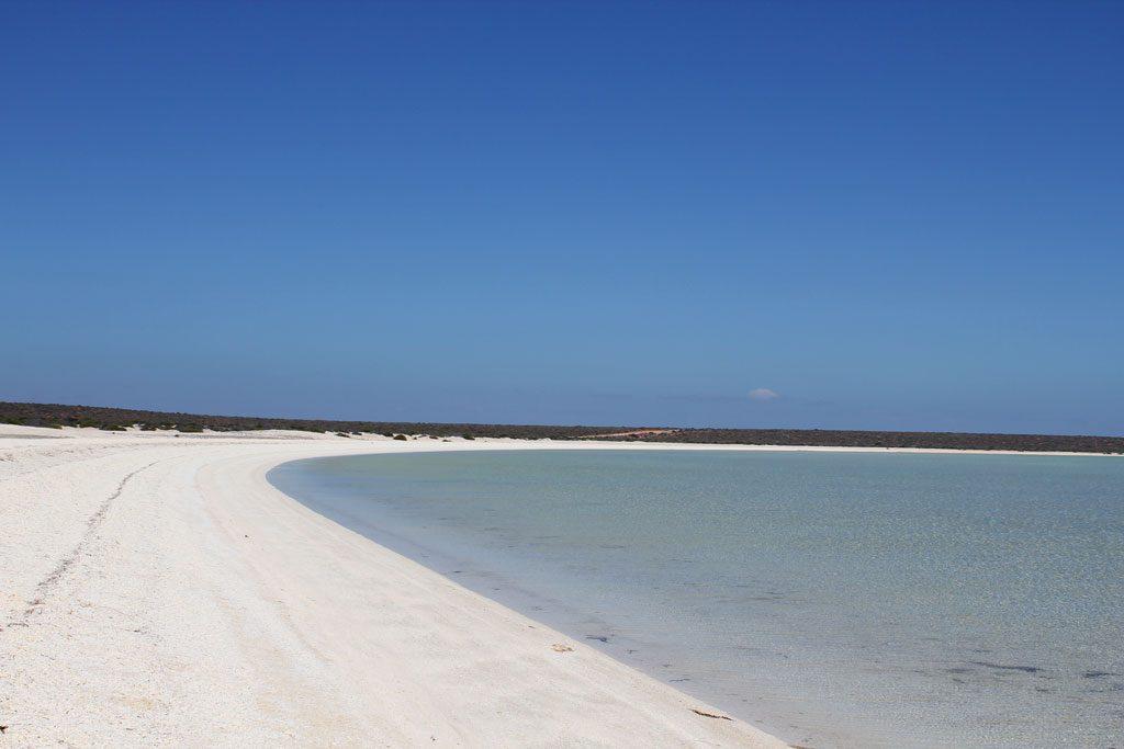 40 km langer Shell Beach in der Shark Bay
