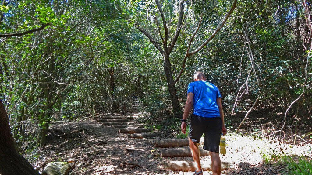 Treppenaufstieg zum Cape Hawk Lookout