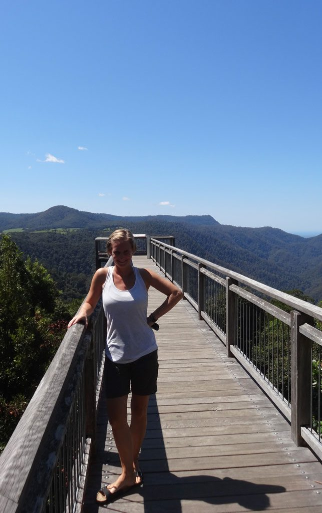 Der Skywalk im Dorrigo NP