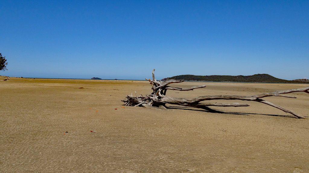 Ebbe am Kinka Beach