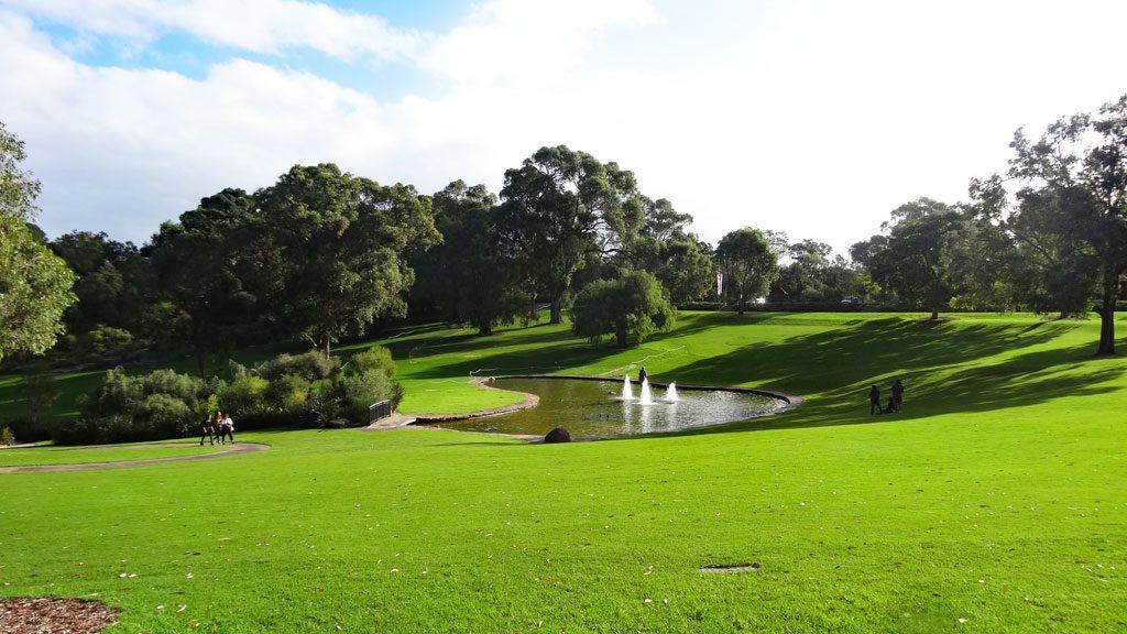 Grünfläche im Kings Park in Perth