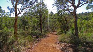 Wanderweg im John Forrest Nationalpark