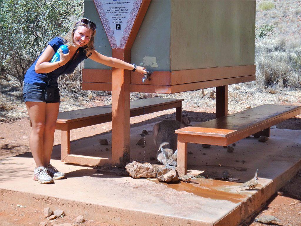 Rasthaus valley of the winds walk, Uluru Australien
