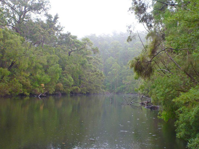 Fluss, Maiden Bush