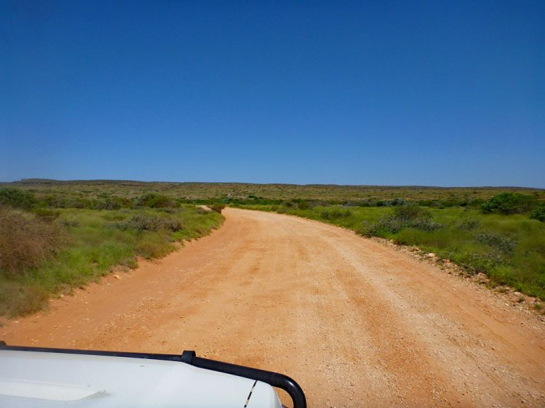 Dirt-/gravelroad in Australien