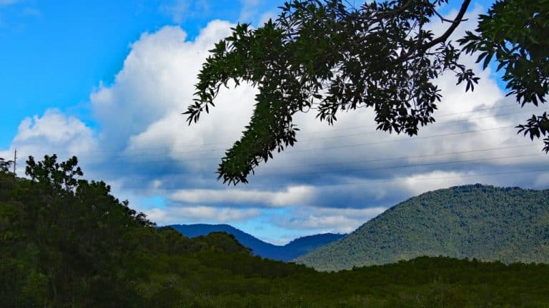 Conwy Nationalpark, Airlie Beach, Queensland