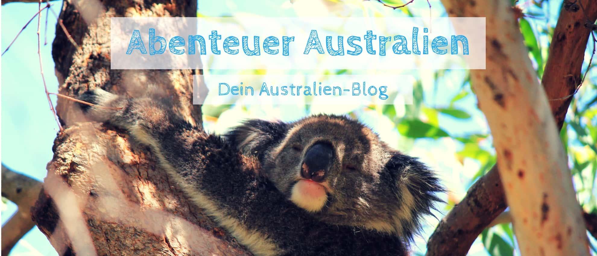 Australien Blog - australien-guide.com