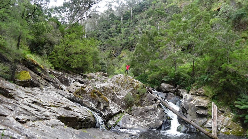 Cumberland Falls, Great Ocean Road, Australien