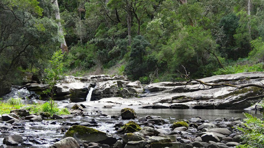 Cumberland River, Australien