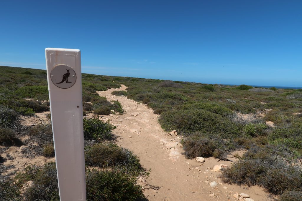 Bigurda Trail_Coastal Walk_Kalbarri Nationalpark, Australien