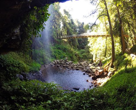 Crystal Shower Falls im Dorrigo Nationalpark