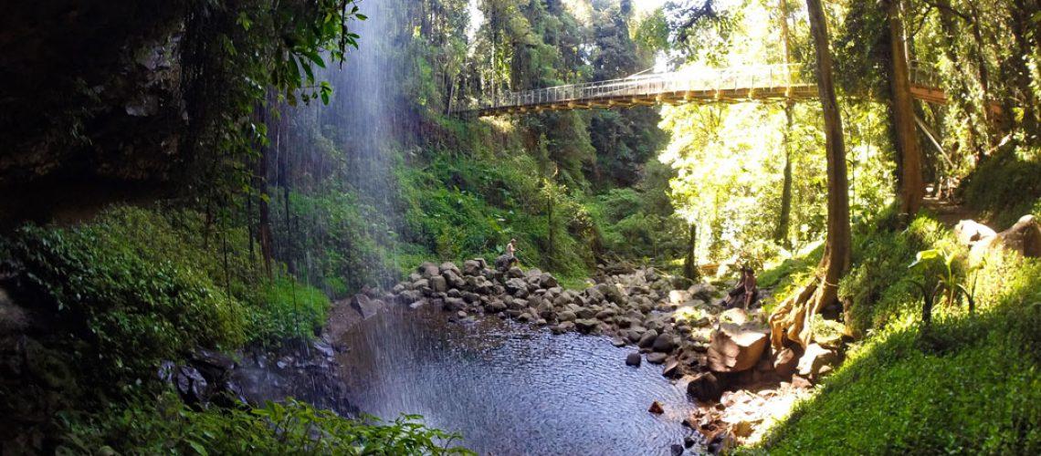 Crystal Shower Falls im Dorrigo Nationalpark