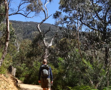 Wonderland Walk, Grampians Nationalpark Australien
